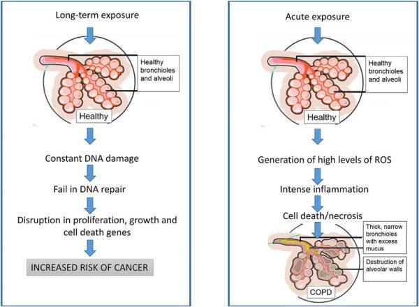 Bụi mịn là một trong những nguyên nhân gây ung thư phổi